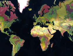 Our entire planet's geology, mapped.